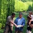 """Wij zoeken een """" Projectleid(st)er Groene Vruchtenbuurt"""", die op vrijwillige basis voor het wijkberaad Vruchtenbuurt het overleg met medebewoners over het openbaar groen op gang brengt. Maar ook de bewoners […]"""